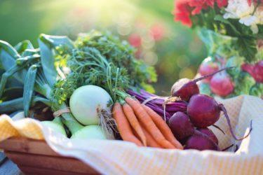 薄毛予防に良い食べ物・悪い食べ物とは?食生活で薄毛改善!